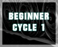 Beginner Cycle 1