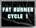 Fat Burner Cycle 1