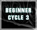 Beginner Cycle 3