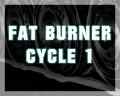 Fat Burner Cycle 1