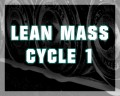 Lean Mass Cycle 1